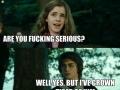 H*rny Harry