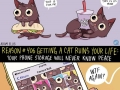 How a cat ruins your life