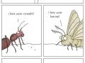 Super insect squad