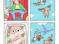 Birds pranking people