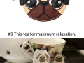 Gifts for the pug lovers