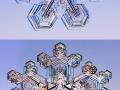 Microscopic snowflakes