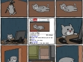 Cat learns harsh reality