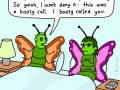 Casual insects
