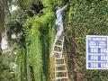 Ladder Stacker