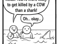 Oh no, it's a shark!