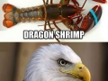 Accurate animal names
