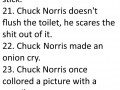 Ultimate Chuck Norris facts