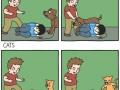 Backstabbing kitty