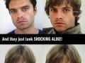 Sebastian Stan looks like a young Luke Skywalker