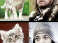 Cat of Thrones #CoT