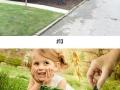 Photoshoppers make damaged lawn seem interesting
