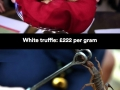 Most expensive substances on Earth