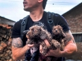 Dude almost died to save pups from dog meat festival in Asia (Graphic)