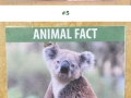 Fake animal facts at the Los Angeles Zoo
