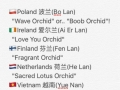 Country names in Mandarin pt.2