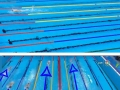 This is how much faster Katie Ledecky is