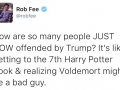Except Voldemort has a good back story