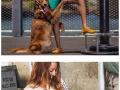 A hug dog