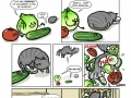 Cat vs cucumber
