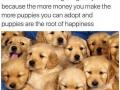 More money = more doggos