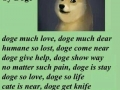 Much poem. Wow. Such doge
