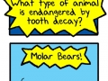 What animal is endangered by tooth decay