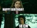 H0rny Harry
