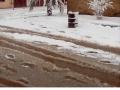 Biggest snowfall in the Sahara Desert