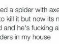 F**kboi spider