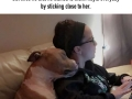 Woman adopts a pitbull who can�t stop hugging her