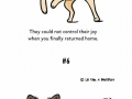 10 things every dog owner knows