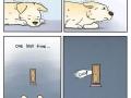 How a dog feels home alone