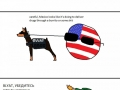 Countryballs and their pets