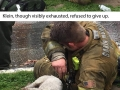 Firefighters rescue pup