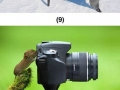 A few animals which really want to be photographers