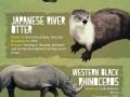 Animals that went extinct in the 21st century
