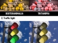 How people with different types of colour blindness see the world