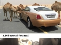 How rich people in Dubai live their lives