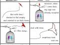 Story of a bird