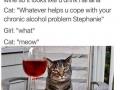 Oh Stephanie