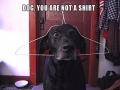 You're not a shirt
